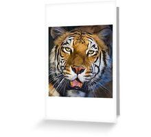 318 cinnamon tiger Greeting Card