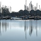 Reflections in the Marina by Adri  Padmos