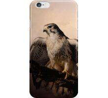 Prairie Falcon iPhone Case/Skin