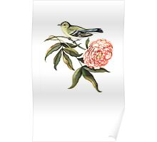 Watercolor bird and flower peony Poster