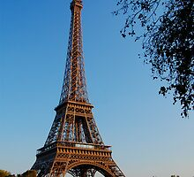 Eiffel Tower from Bank by eic10412