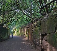 Warwick Castle Wall  by StephenRB