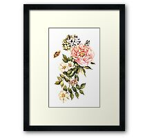 Watercolor vintage floral motifs Framed Print