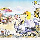 Gannets! by RoseRigden