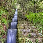 Small Waterfall at Madeira Island by eic10412