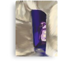 Penguin and shelter  Canvas Print