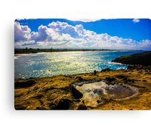Puddle in Paradise Canvas Print