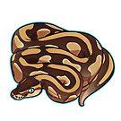 Lesser Ball Python by cargorabbit