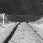 Railway line Tyabb Victoria by Lanii  Douglas