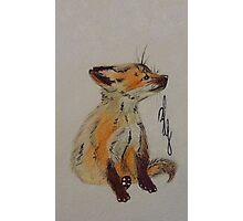 Master Fox Photographic Print