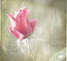 Reminiscing by Linda Lees