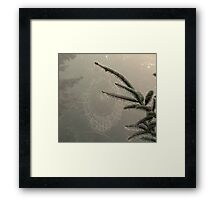 Woodland Lace Framed Print