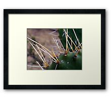©NS In Thorns IAT Framed Print