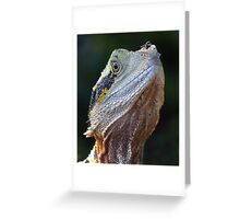 Watch That Fly Greeting Card