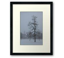 Whispering Snowflakes Framed Print