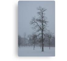 Whispering Snowflakes Canvas Print