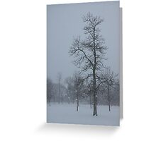 Whispering Snowflakes Greeting Card