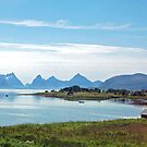 Stokmarknes - Lofoten - Norway by Arie Koene