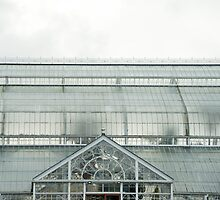 People Palace Winter Gardens in Glasgow by photoeverywhere