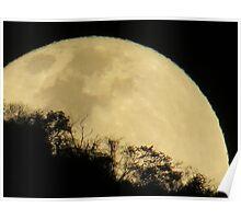 springtide's moonrise - salida de la luna en primavera Poster