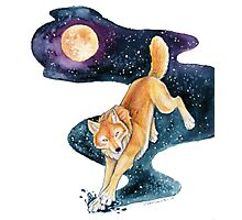 Golden Wolf with Fantasy Stars Photographic Print