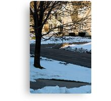 Snow in the Neighborhood Canvas Print