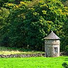 Dovecote At Swainsley, near Warslow by Rod Johnson