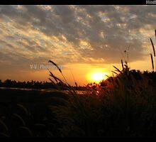 Sunset at Kumarakom, Kerala, India by Vinod Vijayan
