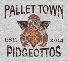 Pallet Town Pidgeottos by myfluffy