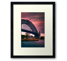 In The Pink... Framed Print