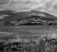 Keswick And Skiddaw by Steven Dworak