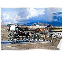 Montana Amish Poster