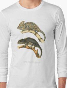 Chameleon Scientific Illustration Long Sleeve T-Shirt