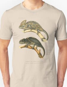 Chameleon Scientific Illustration T-Shirt