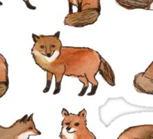 Foolish Foxes Sticker