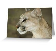 318 puma Greeting Card