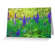 Blue Lupin in the Springtime Greeting Card