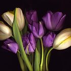 Purple and CreamTulip Bouquet by Barbara Wyeth