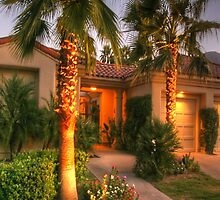 Desert Specialist in Luxury Home Sales by joevetrano
