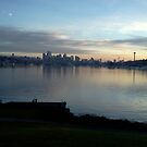 Lake Union Christmas Day 2013 by Mike Cressy