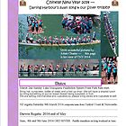 Dragons Abreast Newsletter for Newcastle / Hunter March 2014 by KazM