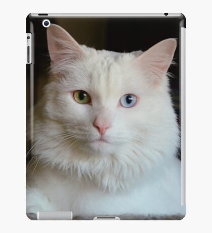Lost in Her Eyes iPad Case/Skin