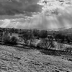 Sunrays over Brynglwys by Nigel Jones