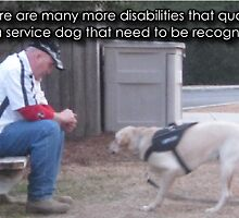 Psychiatric Service Dog Academy by psdregistry
