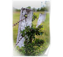 The Old Fencepost Poster