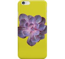 Purple Pearl iPhone Case/Skin