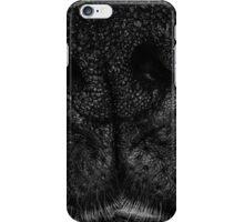 Cleve iPhone Case/Skin