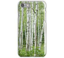 Birch tree forest design iPhone Case/Skin