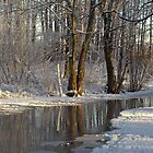 White winter stream by Susanna Hietanen