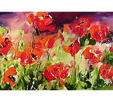 Abstract poppys Photographic Print